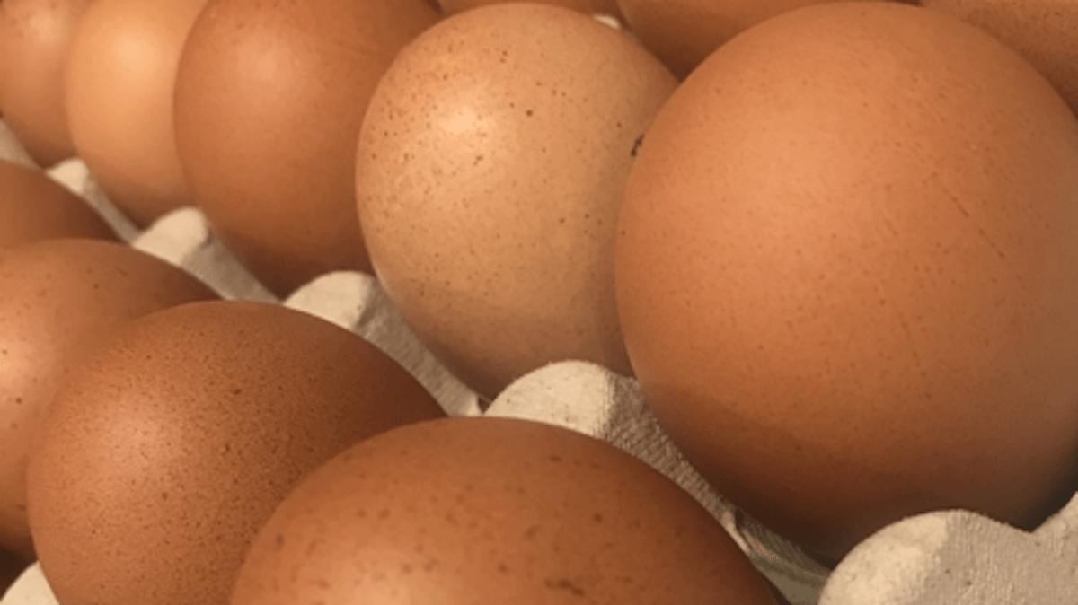 Uova Categoria A Extra Tipo 0 Ambiente Antiossidanti Vitamine Omega 3 raccomandate dalla Nutrizionista Dott.ssa Paola Proietti Cesaretti by thewealthyspoon